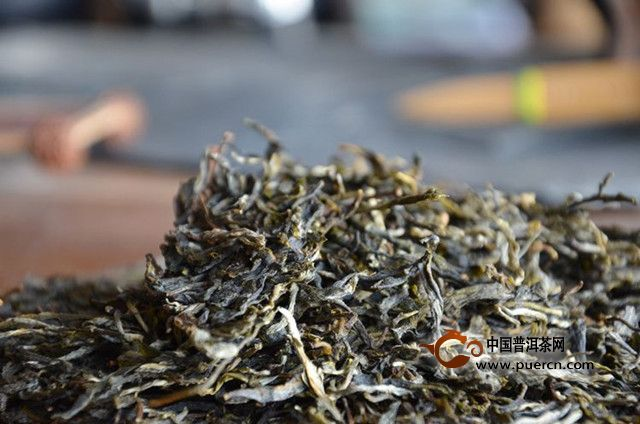 2019年普洱春茶毛料价格